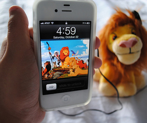 lion king and photography image