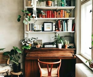 home, book, and study image