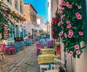 beautiful, flowers, and street image