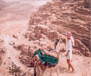donkey, mountains, and wanderlust image