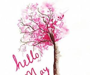 may, pink, and spring image