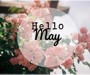 april, may, and goodbye image