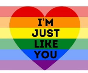 gay, noh8, and equality image