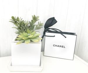 bag, green, and vibes image