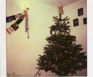 christmas, tree, and polaroid image
