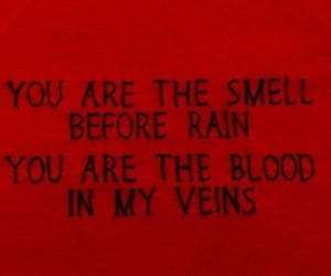 quotes, rain, and blood image