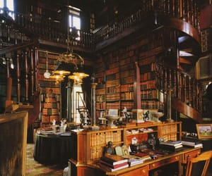 book, library, and france image