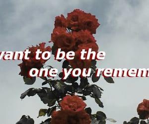 aesthetic, Lyrics, and red image