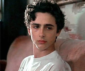 movie, timothee chalamet, and cmbyn image