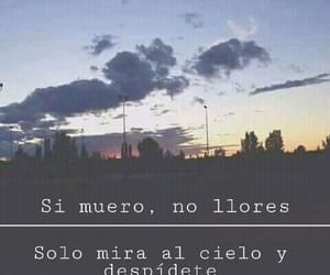 frase and tumblr image