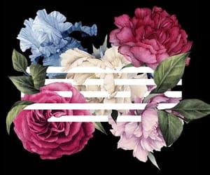 bigbang, flowers, and daesung image