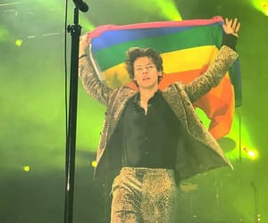 Harry Styles and flag image