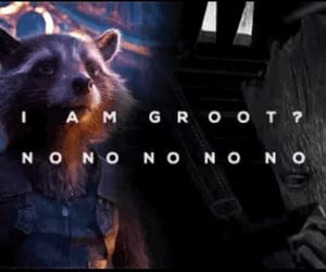 rocket, the avengers, and groot image