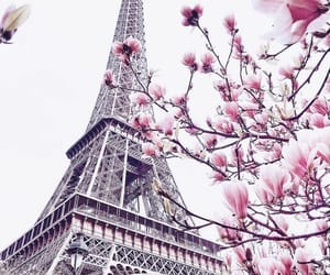 paris, travel, and spring image