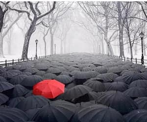 red, umbrella, and black image