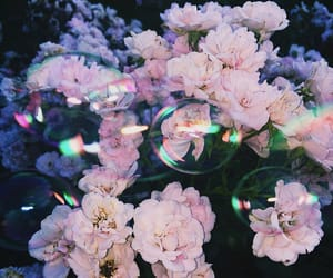 artsy, bubbles, and flowers image