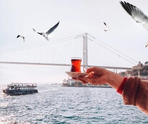 bridge, wallpapers, and istanbul image