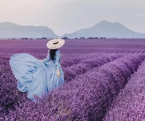 field, purple, and woman image