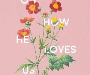 flowers, Lyrics, and wallpaper image