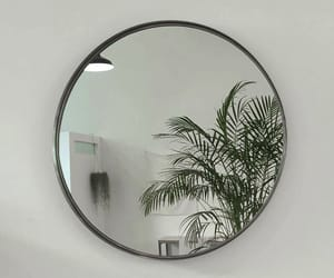 plants, aesthetic, and mirror image