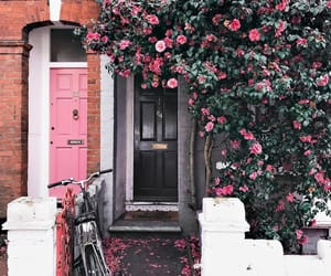 bike, cosy, and flowers image