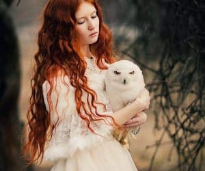 fantasy, owl, and redhead image