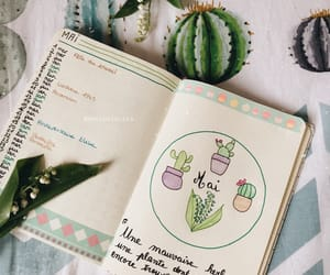 cactus, bujo, and journal image
