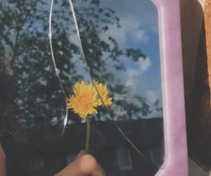 aesthetic, broken, and flower image