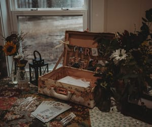 cards, flowers, and vintage image