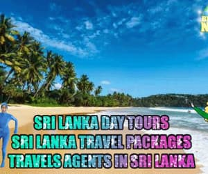 gif and tour operators sri lanka image