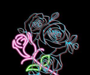 black, rose, and wallpaper image