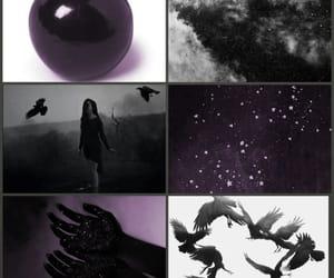 apple, black, and dark image