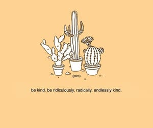 cactus, pink, and words image