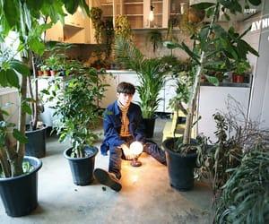 birthday, plants, and vav image