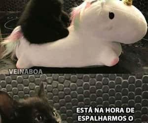 fofo, gato, and unicórnio image