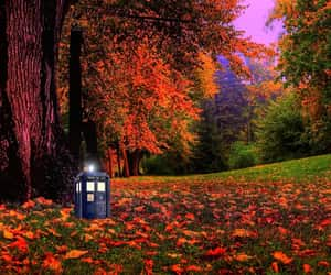 colours, doctor who, and forest image
