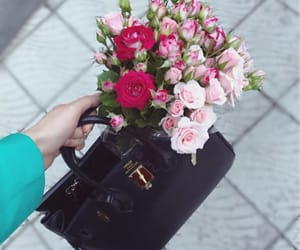 fashion, hermes, and rose image