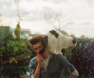cat, boy, and photography image