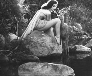 1954, beauty, and nature image