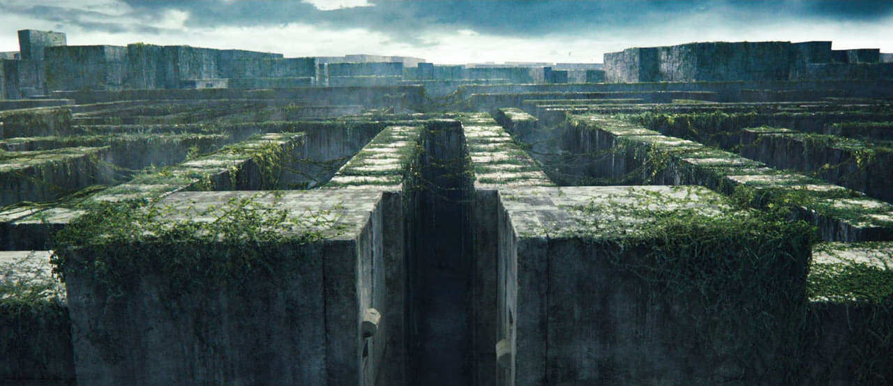 article, maze runner, and tag image