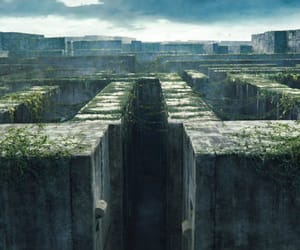 article, tag, and maze runner image