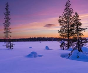 finland, places, and lapland image