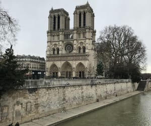 cathedral, europe, and notre dame image