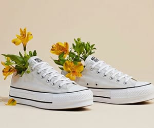 all star, spring, and artsy image