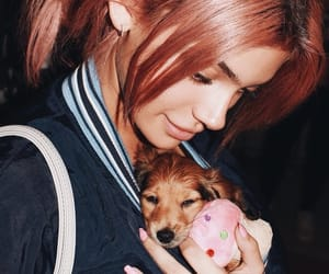 dog, pink hair, and kelsey image
