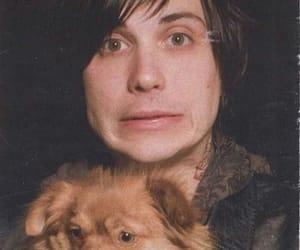 dog, frank, and iero image