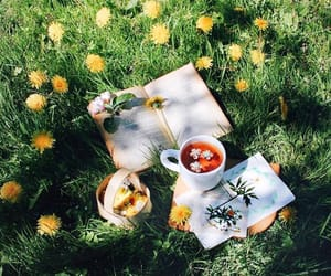 flowers, photography, and tea image