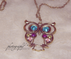 necklace, new, and owl image