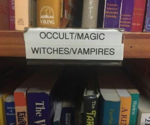 witch, book, and vampire image