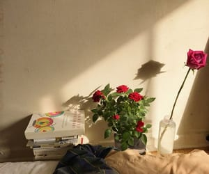 aesthetic, flowers, and books image
